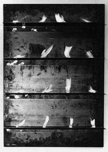 Untitled 1969 iron panel iron shelves solid fuel tablets 213 xxx q85